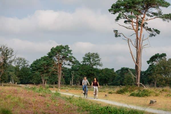 Fietsvakantie Dwingelderveld en Drents Friese Wold