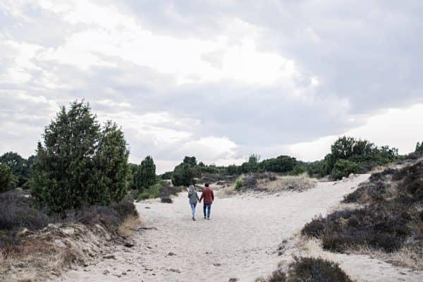 Wandelvakantie Nationaal Park Drents-Friese Wold