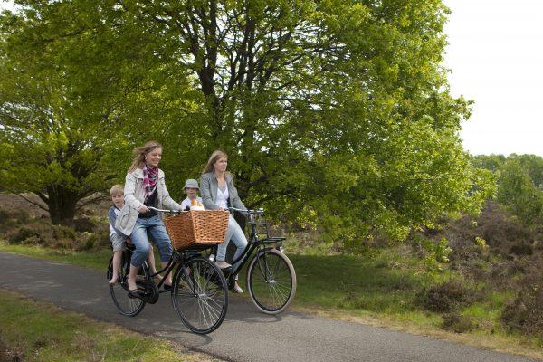 Geopark De Hondsrug - Fiets- en wandelvakanties in Drenthe