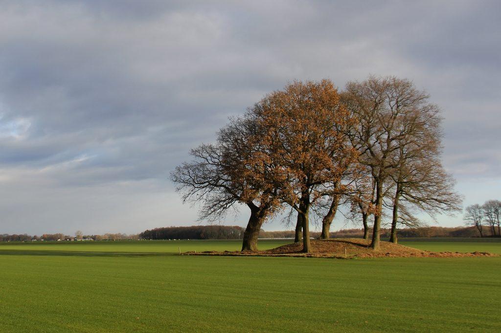 De Hondsrug UNESCO Global Geopark - Fietsvakanties Drenthe