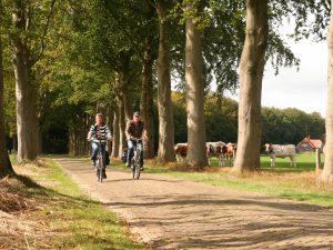 Het gemoedelijke 3-sterren Hotel Hof van Twente is landelijk gelegen in Twente