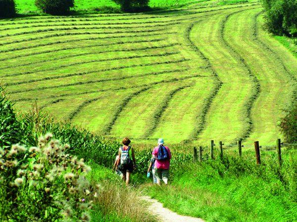 Wandelvakantie Zuid-Limburg © Visit Zuid-Limburg